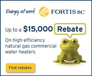 Commercial Boiler Rebate